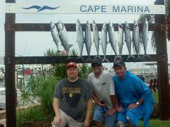 Ofishal Business King Mackerel and Bonitas