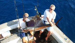 Ofishal Business Charters Deep Sea Sail Fish